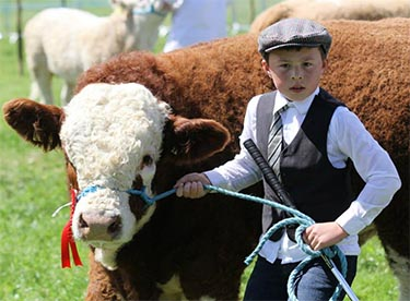 County Louth Agricultural Show 2017